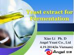 Yeast extract for Fermentation