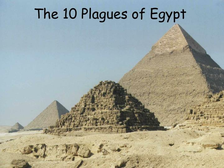the 10 plagues of egypt n.