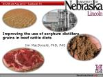 Improving the use of sorghum distillers grains in beef cattle diets
