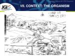 VII. CONTEXT: THE ORGANISM
