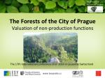 The Forests of the City of Prague Valuation of non-production functions