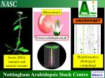 Nottingham Arabidopsis Stock Centre