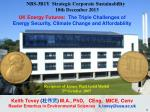 NBS-3B1Y  Strategic Corporate Sustainability   10th December 2013