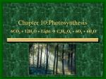 Chapter 10:Photosynthesis