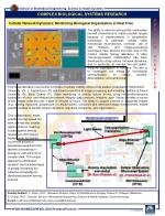 Cellular Network Dynamics: Monitoring Biological Organization in Real Time