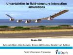 Uncertainties in fluid-structure interaction simulations