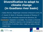 Diversification to adapt to climate change (in Guadiana river basin)