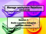 Manage workplace Relations THHGLE10B