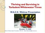 Thriving and Surviving in Turbulent Whitewater Times