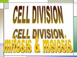 CELL DIVISION mitosis & meiosis
