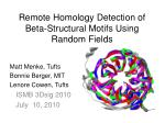 Remote Homology Detection of Beta-Structural Motifs Using Random Fields