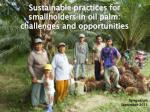 Sustainable practices for smallholders in oil palm: challenges and opportunities