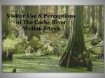 Visitor Use & Perceptions  of The Cache River  Wetland Area