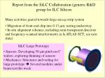 Report from the SiLC Collaboration (generic R&D group for ILC Silicon