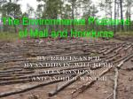 The Environmental Problems of Mali and Honduras