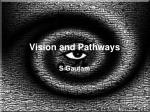 Vision and Pathways