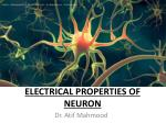 Electrical Properties of Neuron