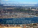 DARK MATTER FROM THE EARLY UNIVERSE AND PARTICLE PHYSICS CANDIDATES