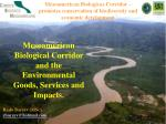 Mesoamerican Biological Corridor and the Environmental Goods, Services and Impacts.