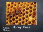 Honey. Bees