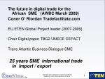 The future in digital trade for the African  SME   (AWBC March 2009)
