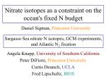 Nitrate isotopes as a constraint on the ocean's fixed N budget