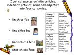 I can categorize definite articles, indefinite articles, nouns and adjective into four categories.