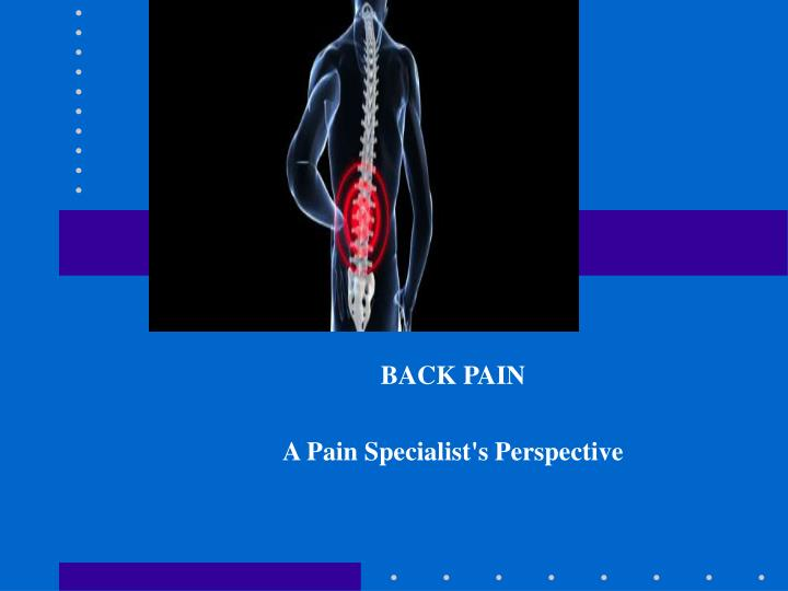 back pain a pain specialist s perspective n.