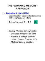 "THE ""WORKING MEMORY"" APPROACH"