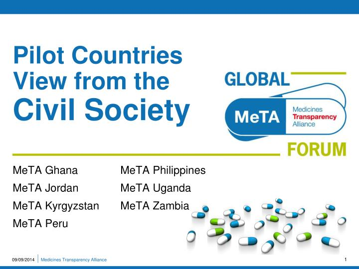 pilot countries view from the civil society n.