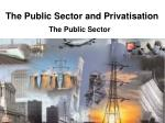 The Public Sector and Privatisation