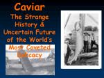 Caviar The Strange History & Uncertain Future of the World's Most Coveted Delicacy