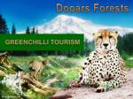 Dooars Forests