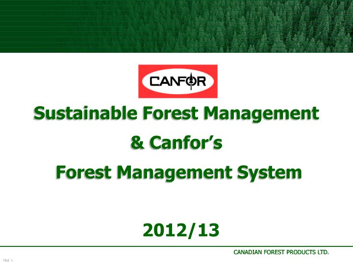 sustainable forest management canfor s forest management system n.