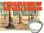 PROCESSING OF