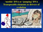 'mobile' DNA or 'jumping' DNA Transposable elements as drivers of evolution