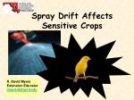 Spray Drift Affects  Sensitive Crops