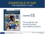The Lymphatic and Immune Systems:  Your Defense Systems