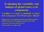 Evaluating the variability and budgets of global water cycle components