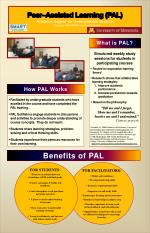 Peer–Assisted Learning (PAL) Academic Support  for Undergraduate Students