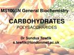 CARBOHYDRATES POLYSACCHARIDES