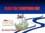 CLEO THE COUNTING CAT