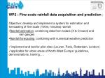 WP2 : Fine-scale rainfall data acquisition and prediction :