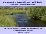Improvement of Meadow Stream Health due to Livestock Distribution Efforts