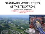 STANDARD MODEL TESTS AT THE TEVATRON