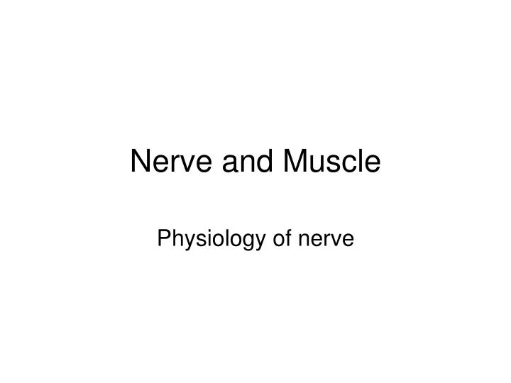 nerve and muscle n.