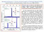 Substitutional Oxygen vs. Vacancy-Oxygen Complex in Cadmium Telluride (CdTe)