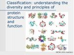 Classification: understanding the diversity and principles of