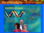 The chemical Basis of Inheritance
