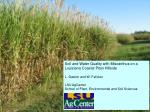 Soil and Water Quality with Miscanthus on a Louisiana Coastal Plain Hillside